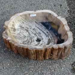 Vasque à poser 54-40 cm en bois pétrifié fossilisé (FOSS55-006YL)