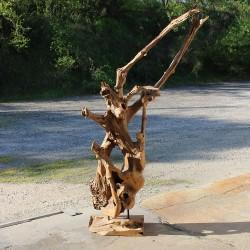 Sculpture d''une racine en Teck H190 (RAC012)
