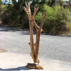 Sculpture d''une racine en Teck H200 (RAC019)