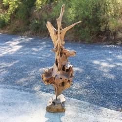 Sculpture d''une racine en Teck H160 (RAC029)