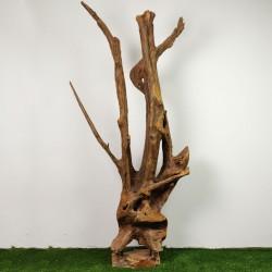 Sculpture d''une racine en Teck H210 (RAC039)