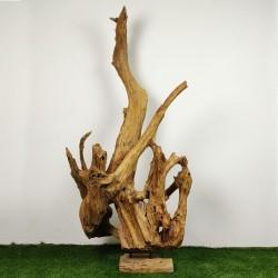Sculpture d''une racine en Teck H193 (RAC040)