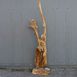 Sculpture d''une racine en Teck H195 (RAC003)