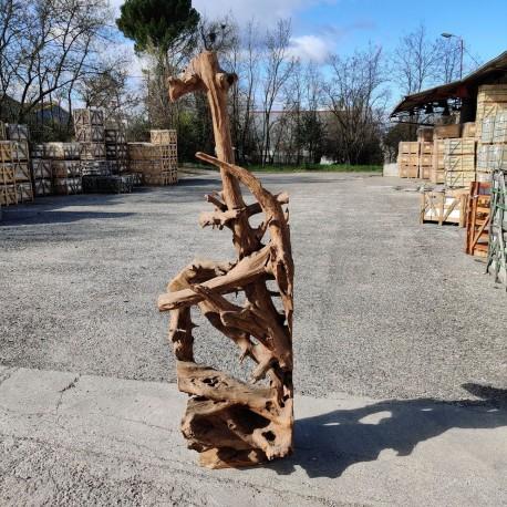 Sculpture d''une racine en Teck H210 (RAC051)